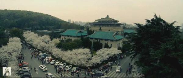 yinghua